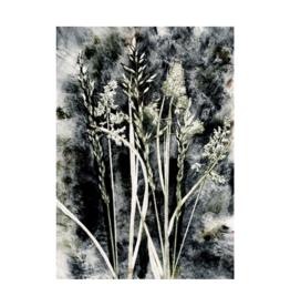 Pernille Folcarelli 'Grass Charcoal' 50 x 70 cm