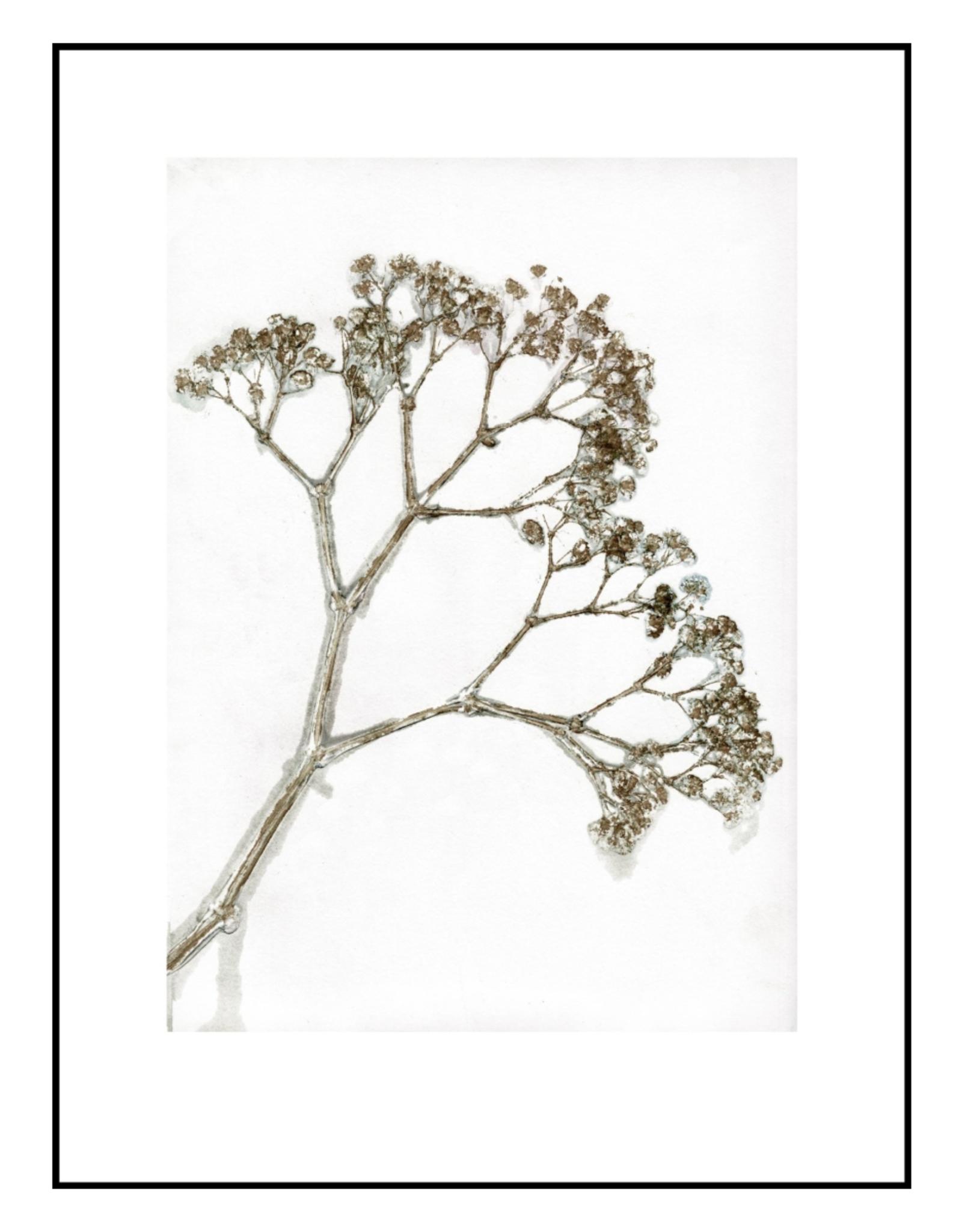 Pernille Folcarelli 'Gypso' khaki 30 x 40cm