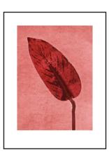 Pernille Folcarelli Calathea brick Red 30x40cm