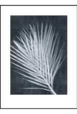 Pernille Folcarelli 'Palm' dark grey 30x40