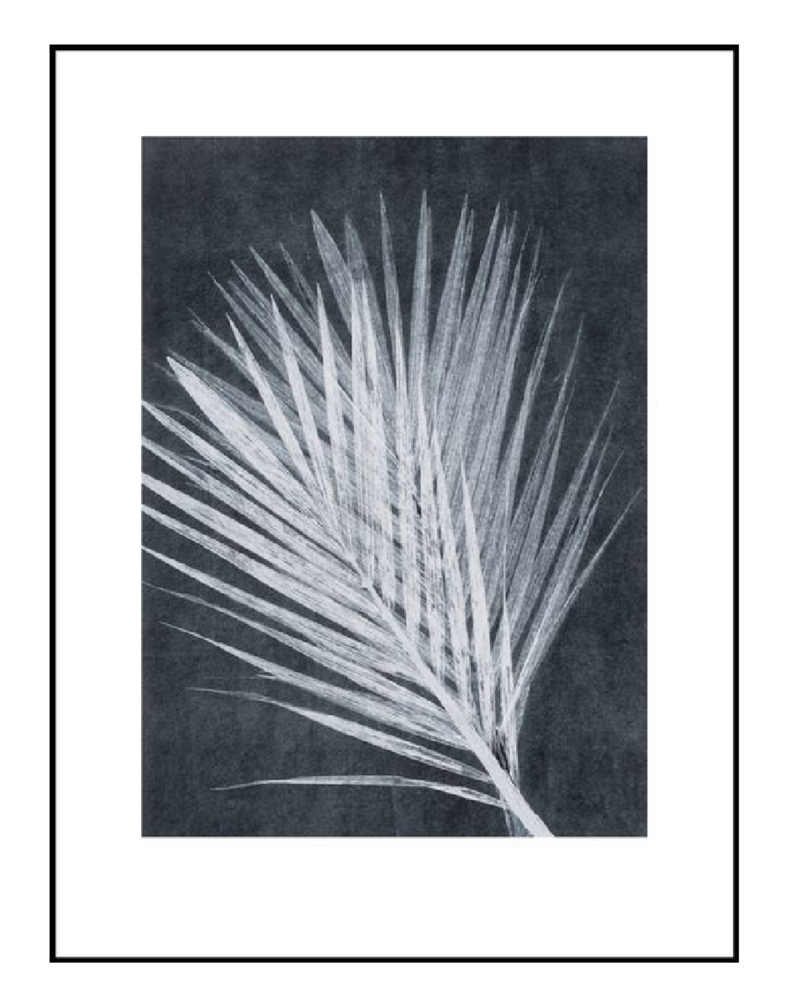 "Pernille Folcarelli ""Palm"" dark grey 30x40"