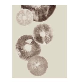 "Pernille Folcarelli 'Mushroom"" cream 30 x 40 cm"