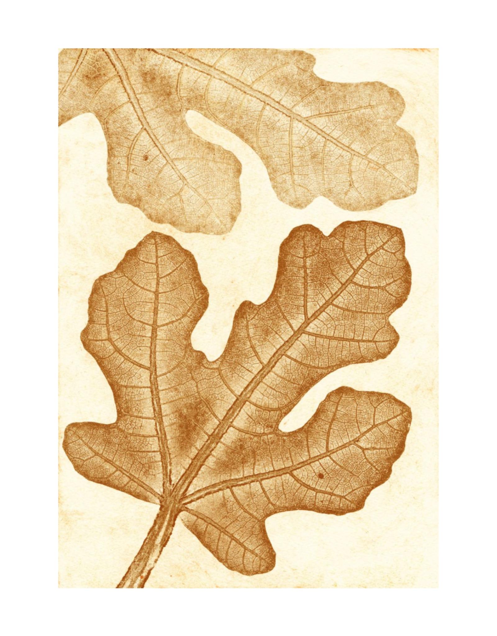 Pernille Folcarelli 'Fig' oker 30 x 40 cm