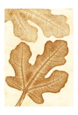 Pernille Folcarelli Artcard A5  'Fig' oker