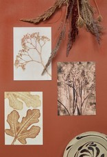 Pernille Folcarelli Artcard A5  'Fig' ochre