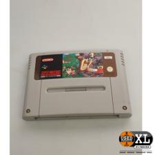 Taz Mania Super Nintendo Game   met Garantie