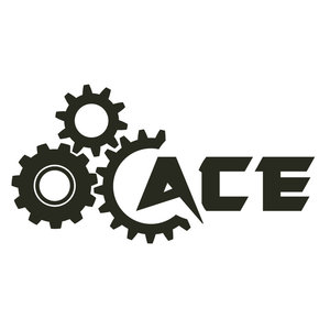 ACE Sting-R Service