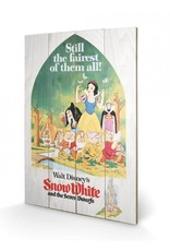 DISNEY - Printing on wood 40X59 - Snow White Still the Faires