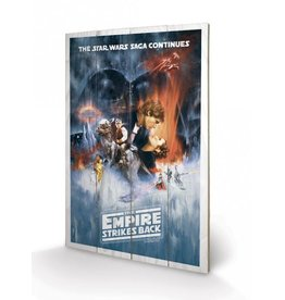 STAR WARS - Wood Print 40X59 - Empire Strike Back