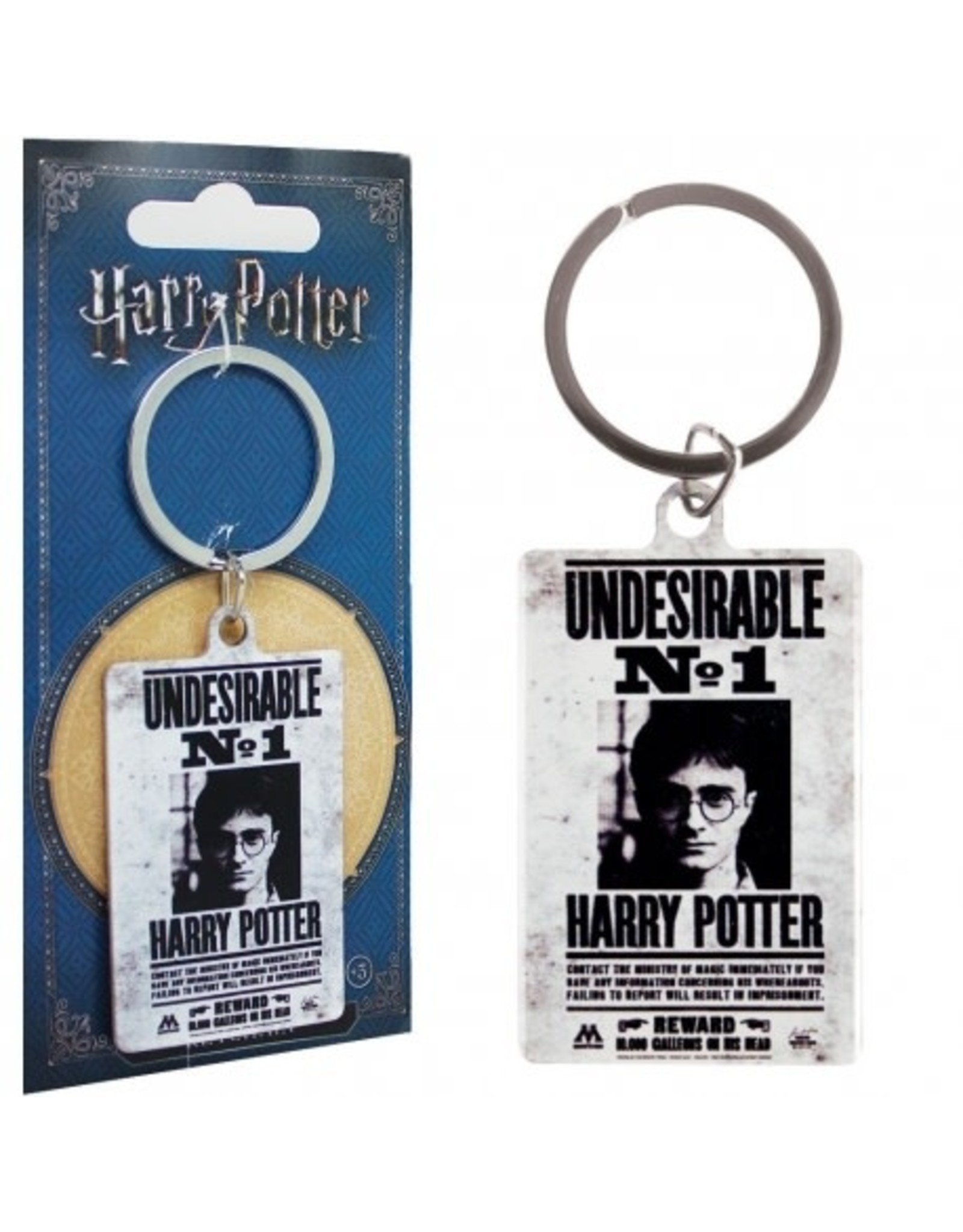 HARRY POTTER - Metal Keychain - Undesirable N°1