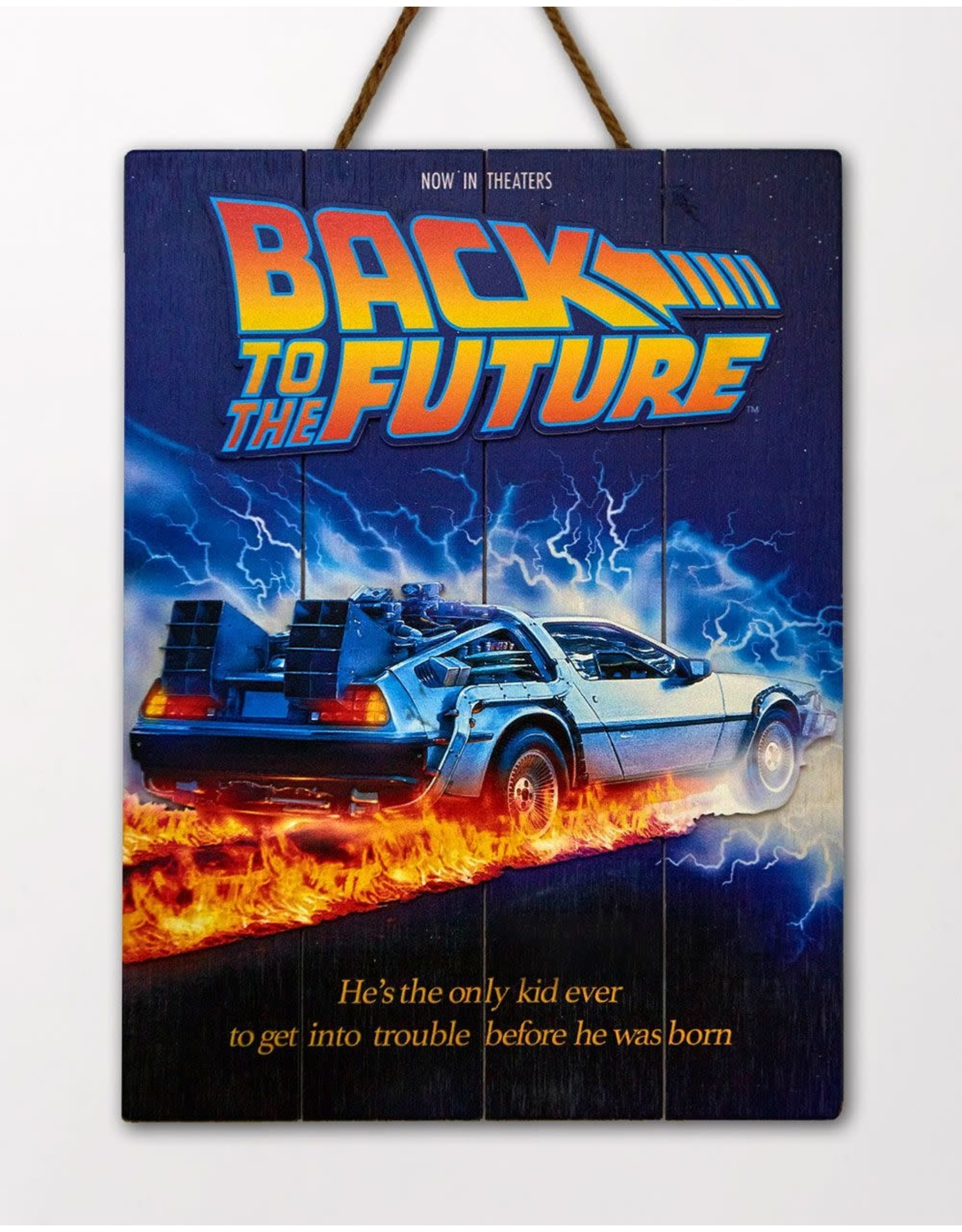 Doctor Collector BACK TO THE FUTURE WoodArts 3D Wooden Wall Art 30 x 40cm - DeLorean