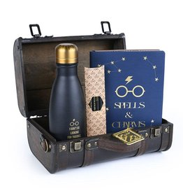 Pyramid International HARRY POTTER Gift Set - Trouble Finds Me