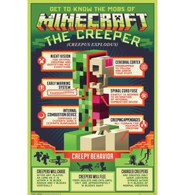 Hole in the Wall MINECRAFT Poster 61X91cm - Creepy Behaviour