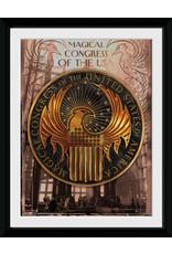 FANTASTIC BEASTS - Collector Print 30X40 - Magical Congress