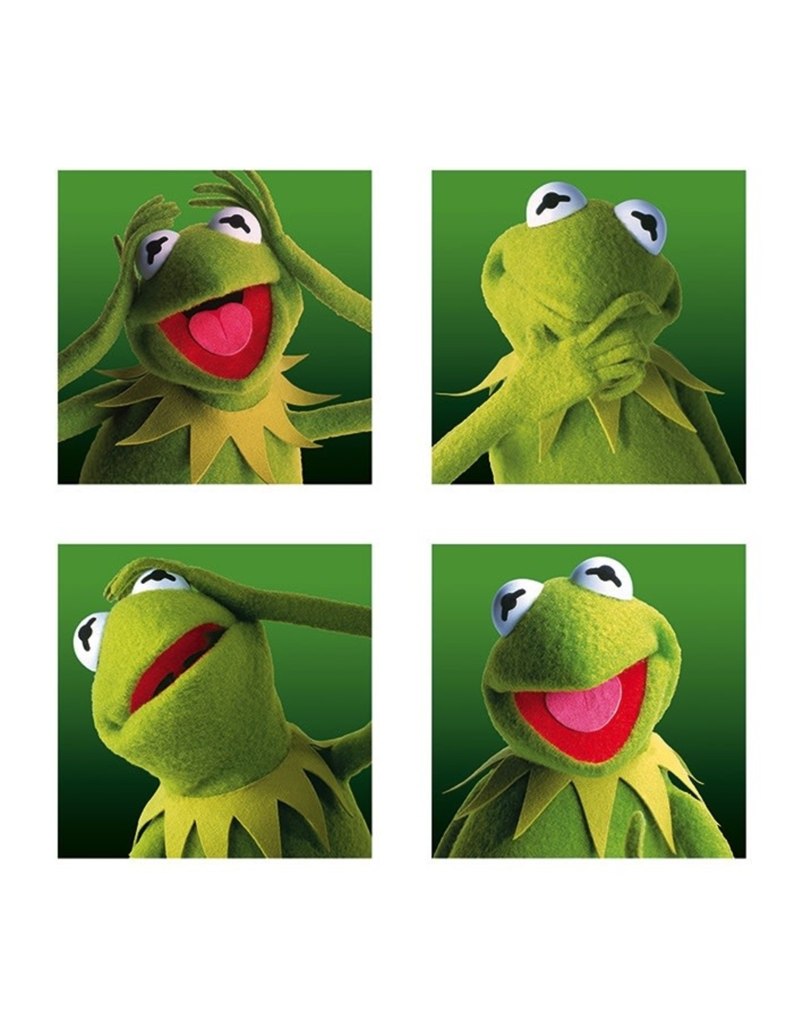 THE MUPPETS - Canvas 40X40 '18mm' - Kermit Boxes