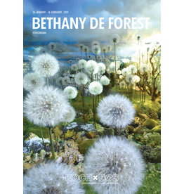 KochxBos Gallery Bethany de Forest 'Stereorama' 2019 A2 poster