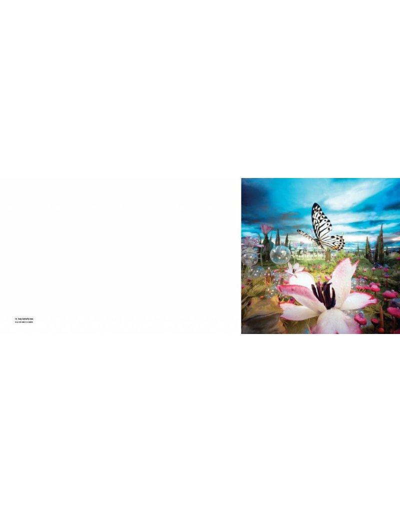 Bethany de Forest Funky Landscapes - 25 jaar pinhole fotografie