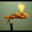 FULLINGMILL - Parachute Hopper