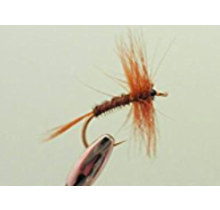 RF - Grey Spinner Red Hackle #16