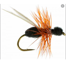 RF - Black Ant Red Hackle Barbless