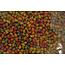 Captura CAPTURA - Flavoured Pellets Tutti Frutti 1kg