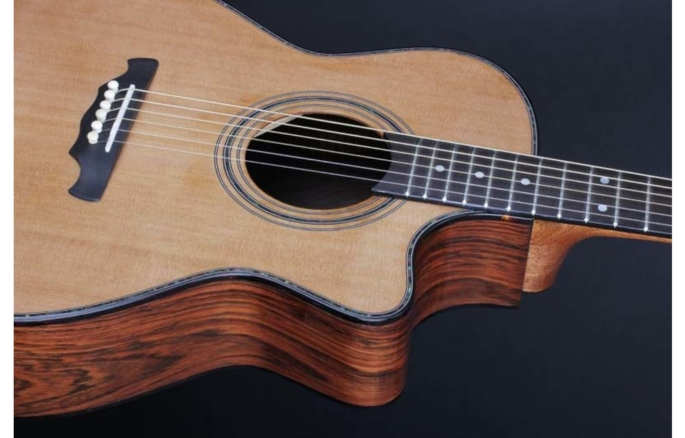 Vox Humana Carbon Acoustic Guitars