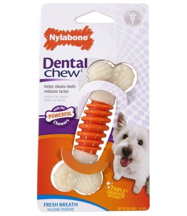 Nylabone dental chew baconsmaak