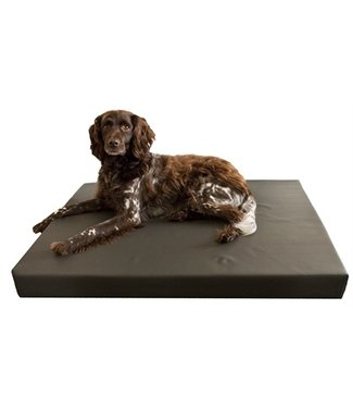 Merkloos Hd orthopedisch hondenkussen grijs