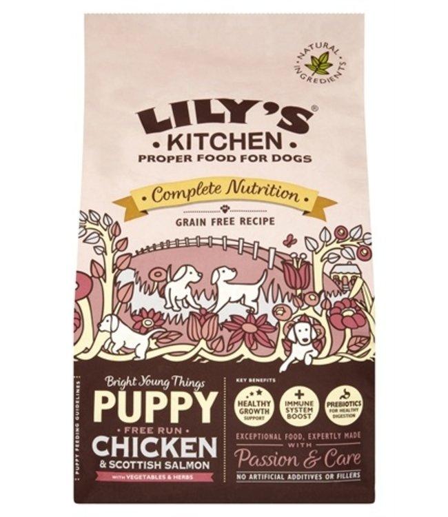 Lily's kitchen dog puppy chicken / salmon