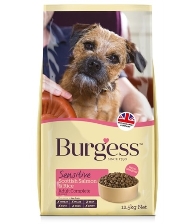 Burgess dog sensitive schotse zalm / rijst