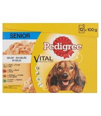 Pedigree Pedigree multipack maaltijdzakjes senior in gelei