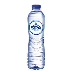 Water Spa Reine blauw petfles 0.50l