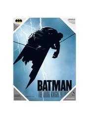 SD Toys DC Comics - Batman The Dark Knight - Poster en verre