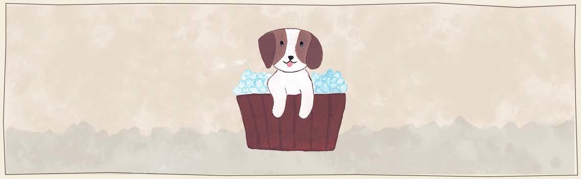 Eco-friendly dog shampoo bars - Fritz & Hammy's