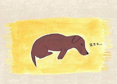 Lekker slapen Zzzz