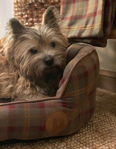 Country Check Dog Bed