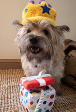 Party Time    Pawfect Present