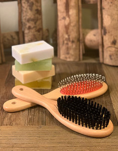 Wooden Bristle Brush