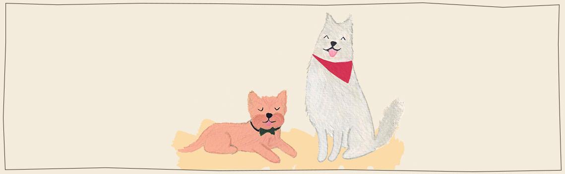 handmade dog collars, bandana's bow ties