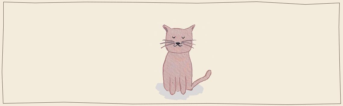 Cat toys webshop