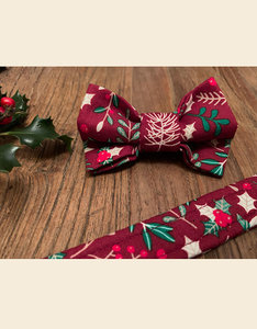 Winter Delight | Bow Tie