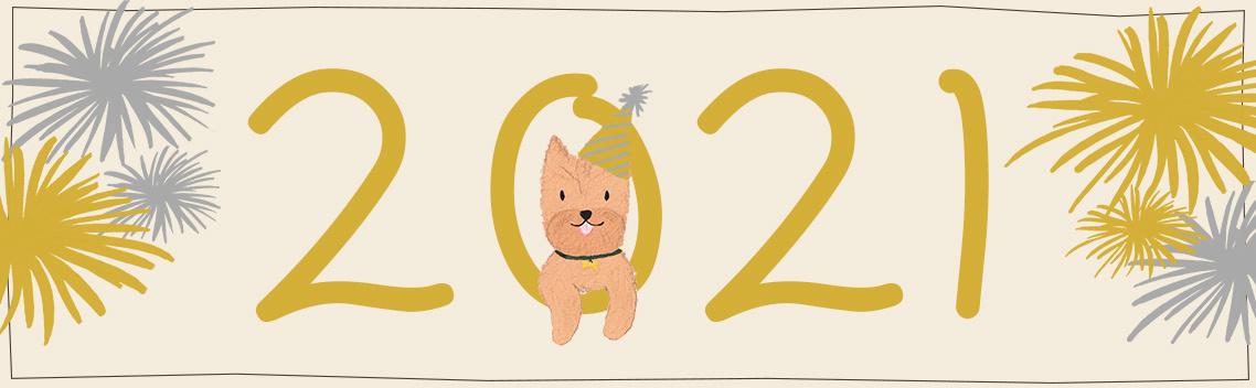 5 Goede Voornemens voor jouw Hond in 2021