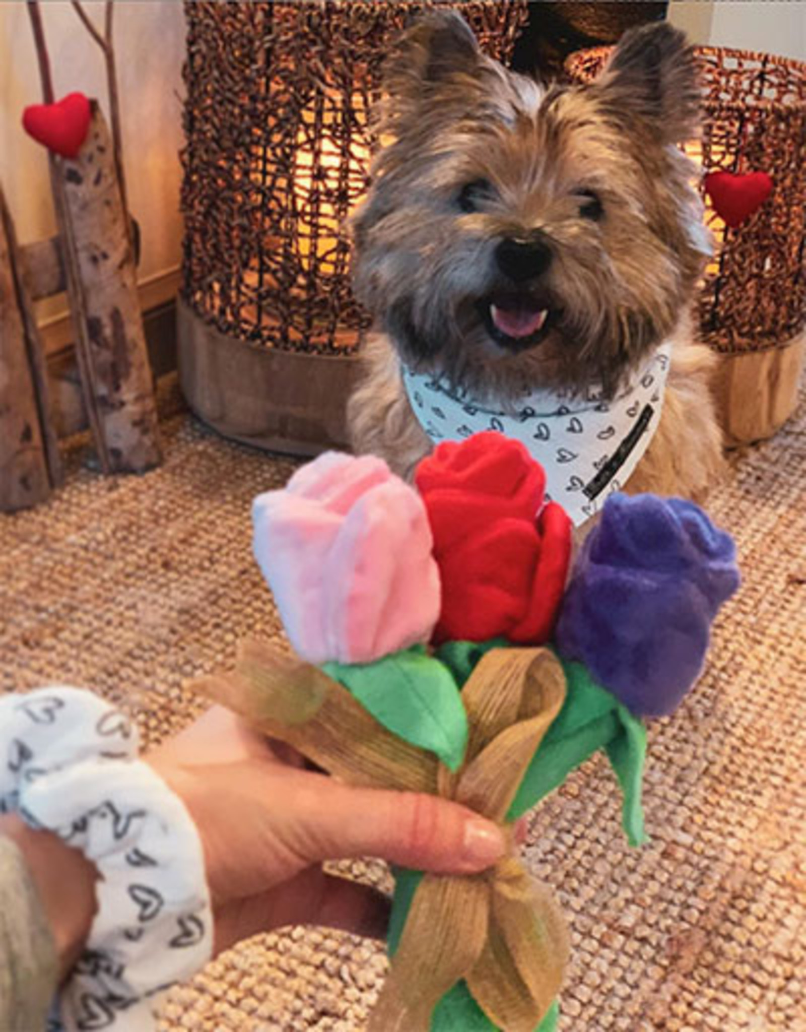 Puppy Love Roses  | Soft Dog Toy