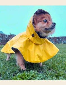 Gele Regenjas Hond