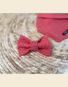Bow Tie | Watermelon Sugar High