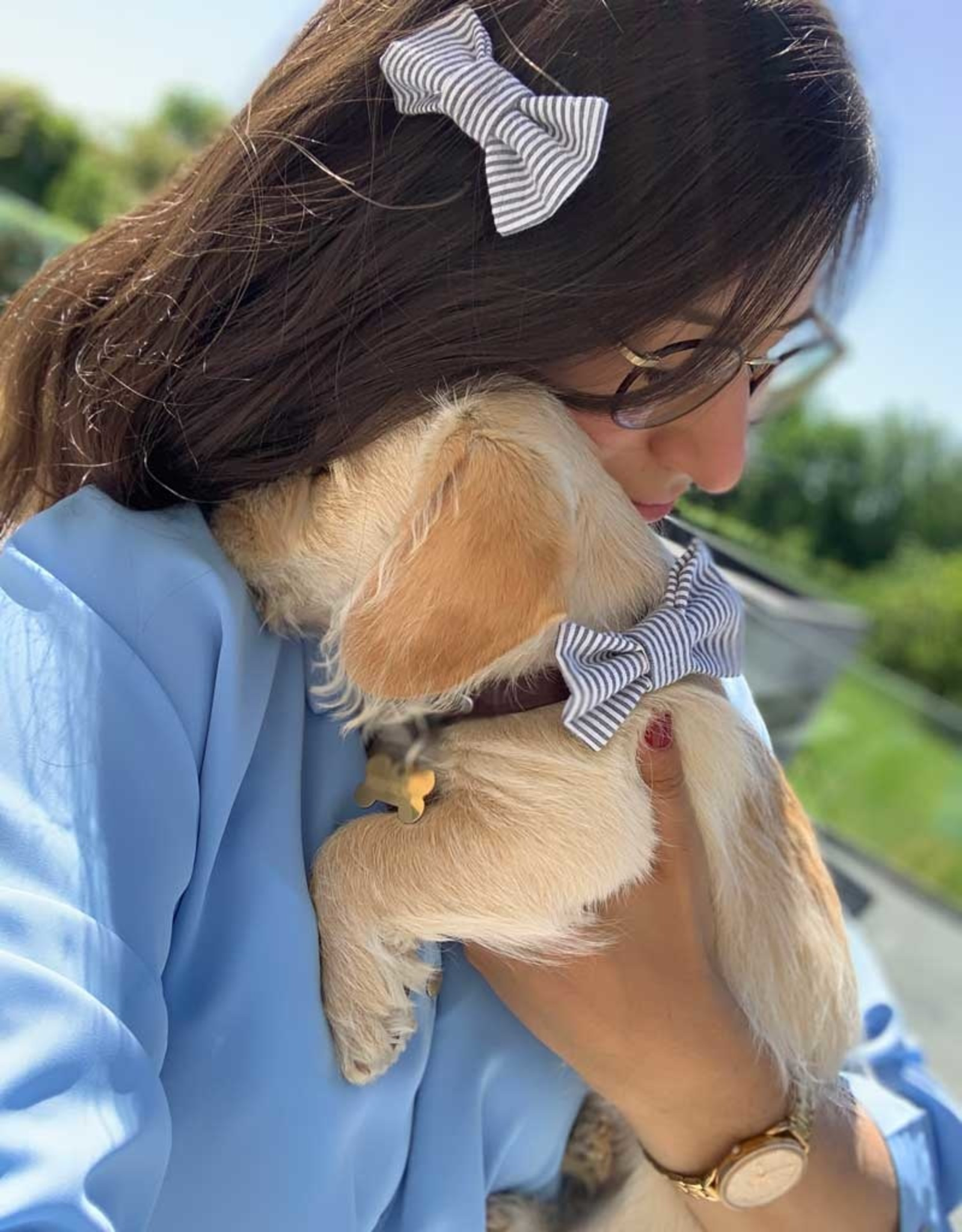 Hair Clip matching with dog | All Colors