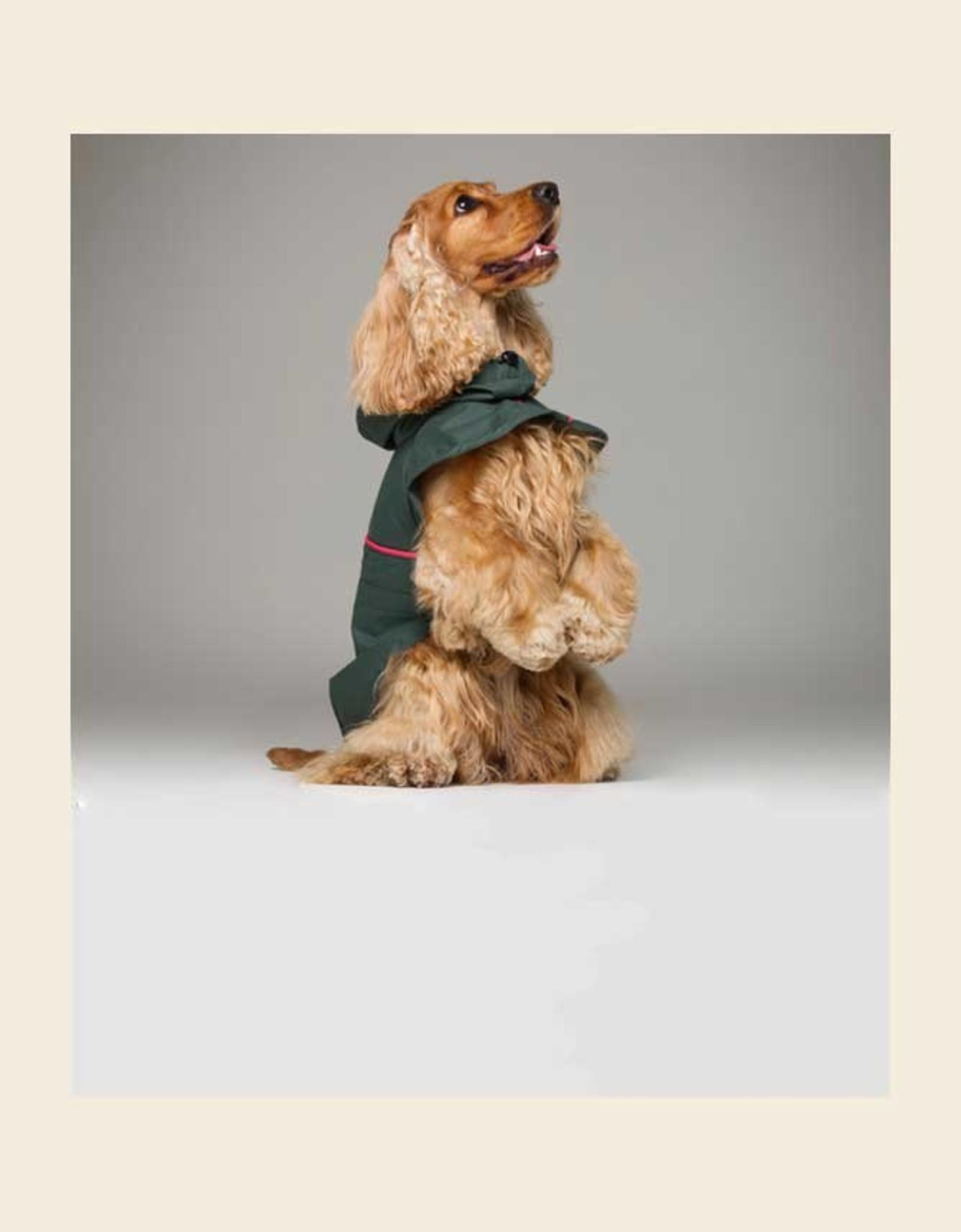 Tintin Raincoat | Olive