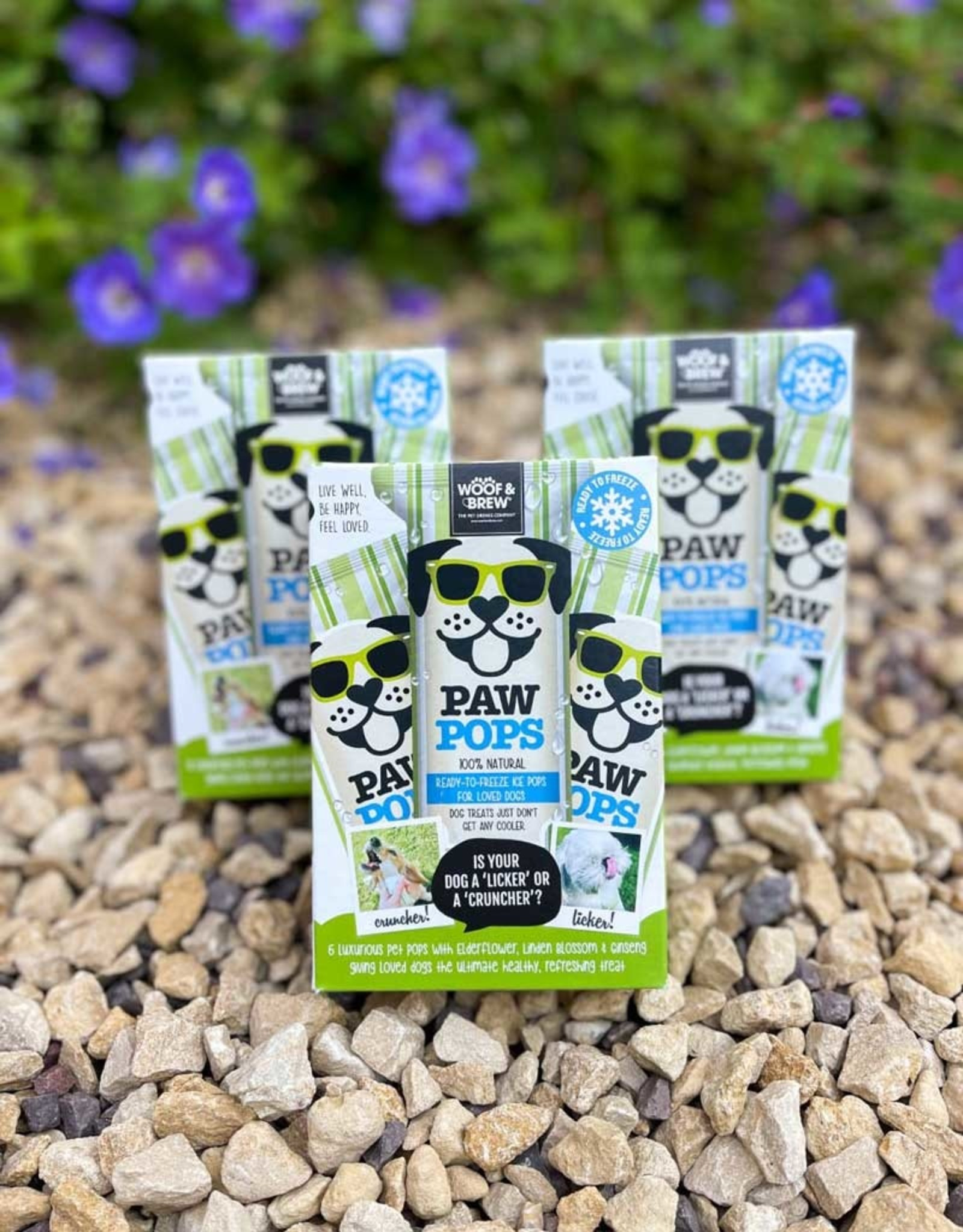 Paw Pops   Ice Pops for Dogs   Freeze at Home