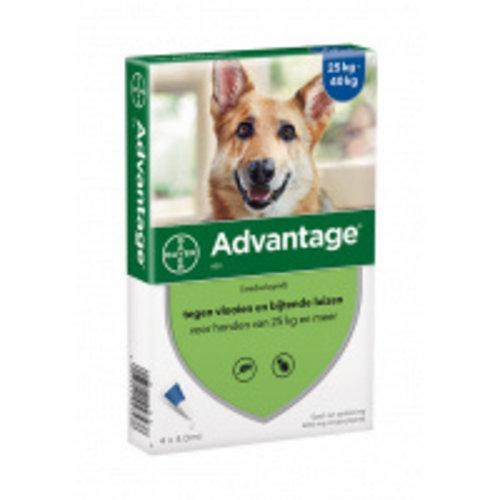 Advantage Advantage Hond 400 1 st.