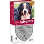 Advantix Advantix 600 > 6 Pipet 1 st.